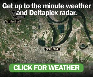 https://deltaplexnews.com/weather/